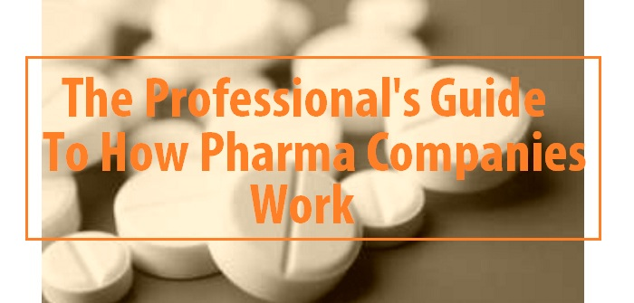 The professional's guide to how pharmaceutical companies work