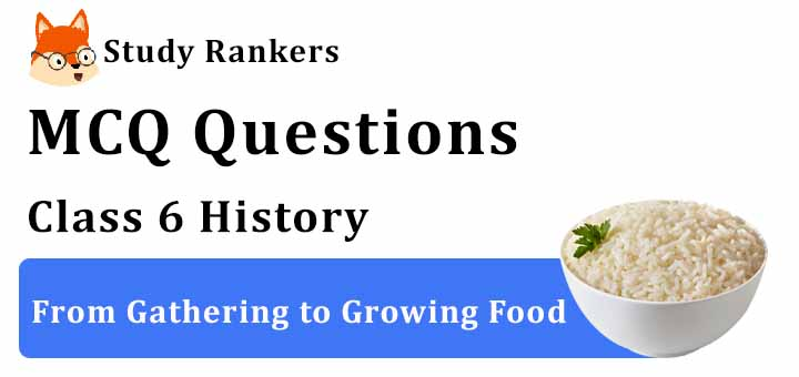 MCQ Questions for Class 6 History: Ch 3 From Gathering to Growing Food