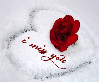 heart drawn over snow & i miss you with red rose