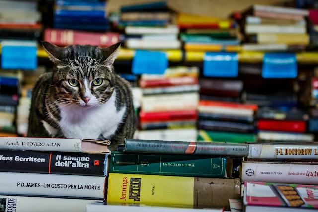 Thời tiết singapore tháng 12: Giới thiệu các nhà sách ở Singapore