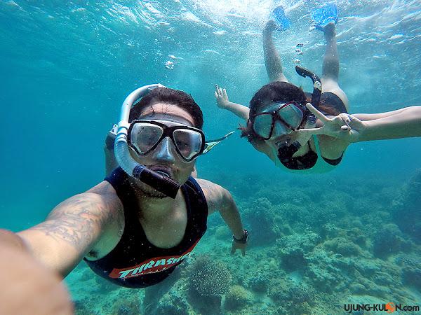spot-snorkeling