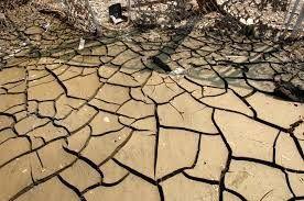 Gambar Penjemuran atau pengeringan dasar kolam tanah