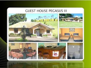 Guest House Pegasus 3