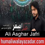 https://www.humaliwalyazadar.com/2018/09/ali-asghar-jafri-nohay-2019.html