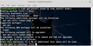 Cara Install Midori Web Browser Ringan Di Ubuntu 18.04 LTS Bionic Beaver