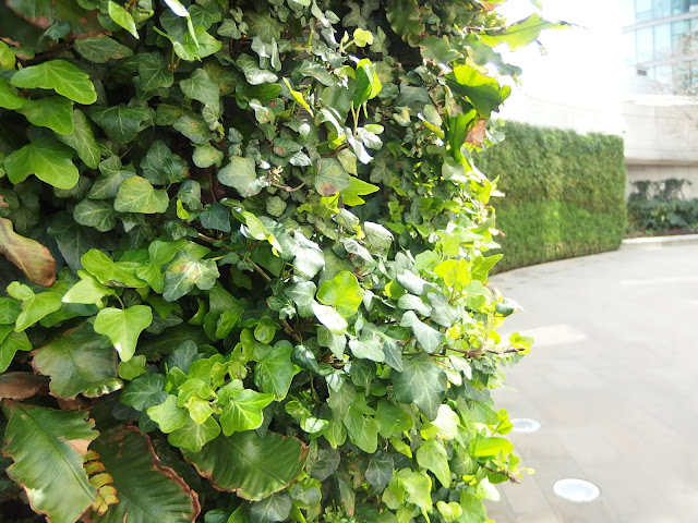 Paddington Central's main green wall