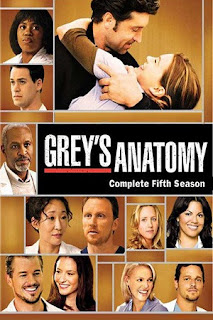 Grey's Anatomy S05 All Episode [Season 5] Complete Download 480p