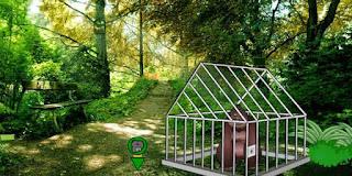 Forest Gorilla Cage Escape Solución