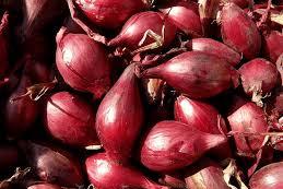 Manfaat Kesehatan Dan Nutrisi Bawang Dan Tumbuh Sendiri
