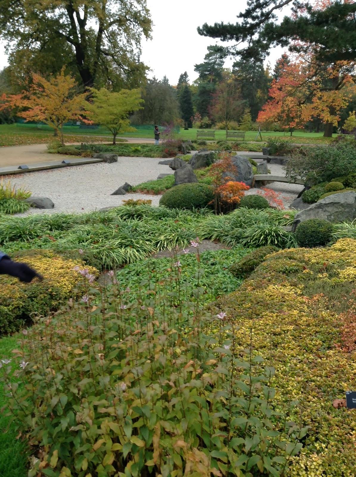 Mercurelli's Garden Design: Wordless Wednesdays: Autum At