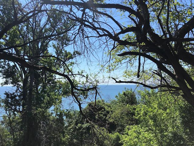 Lake Michigan peeks at us through the trees at Sheridan Park in Cudahy, Wisconsin.