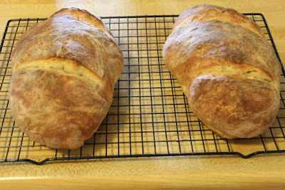 sourdough bread loaves