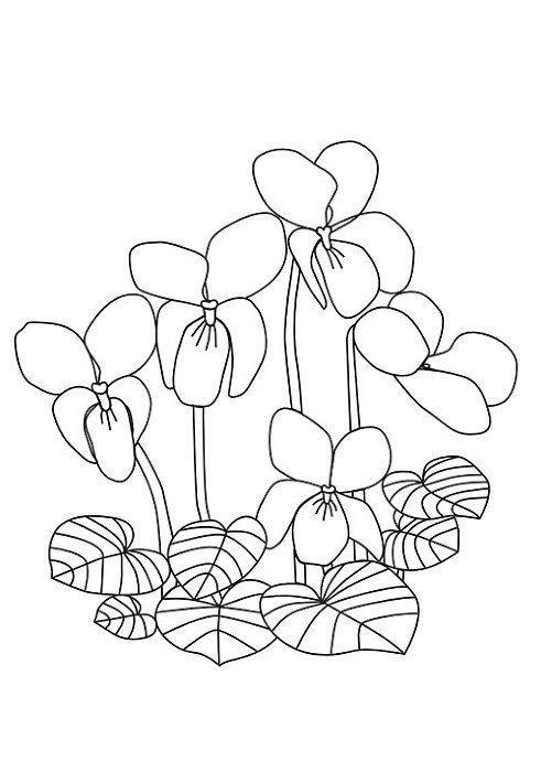 Tranh tô màu bông hoa 2
