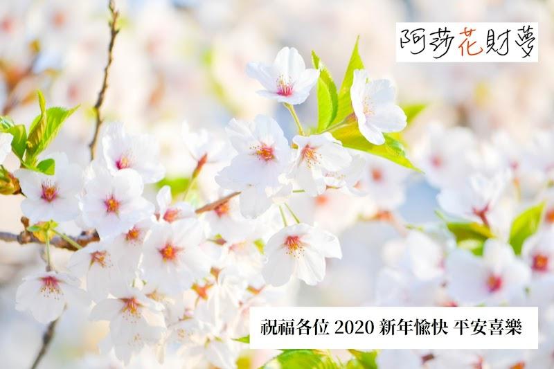 阿莎花財夢-年度好文精選輯