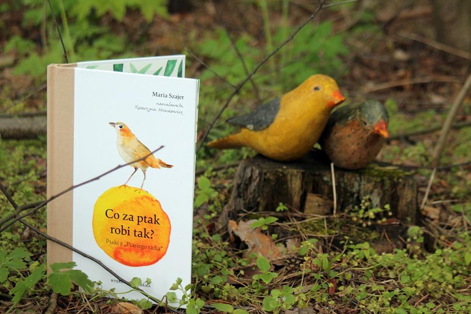 Maki W Giverny Co Za Ptak Robi Tak Ptaki Z Ptasiego Radia
