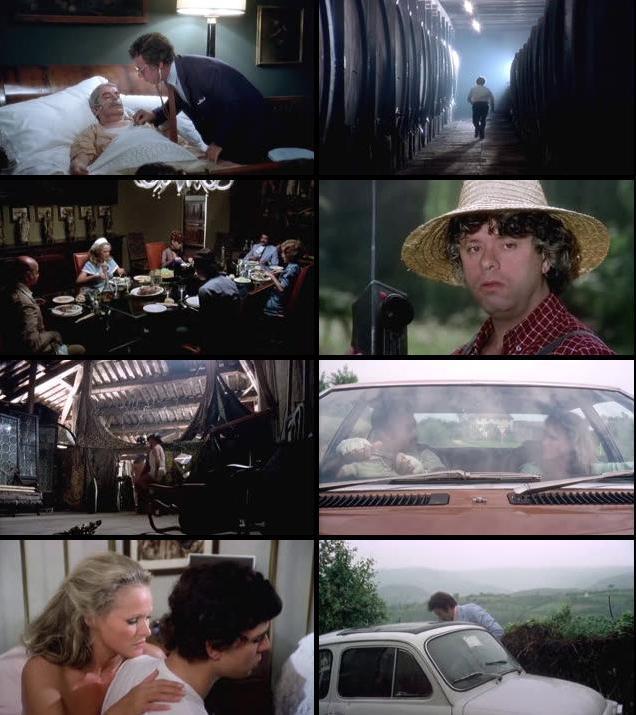 The Sensuous Nurse 1975 UNRATED Dual Audio Hindi 480p DVDRip