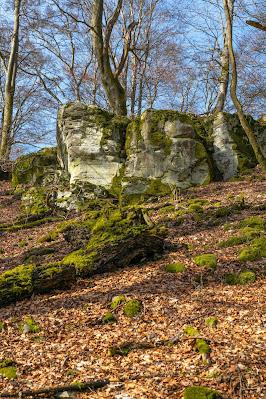 Felsentour Herbstein | Extratour Vogelsberg | Wandern in Hessen 18