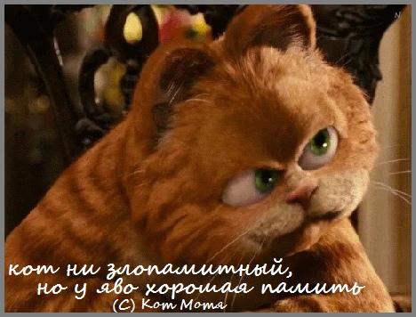 Блог Кота Моти \Кот Матвей Хвостов: Пятница, ядрит тваю..ыхыхы  L0rXBQe5QWc
