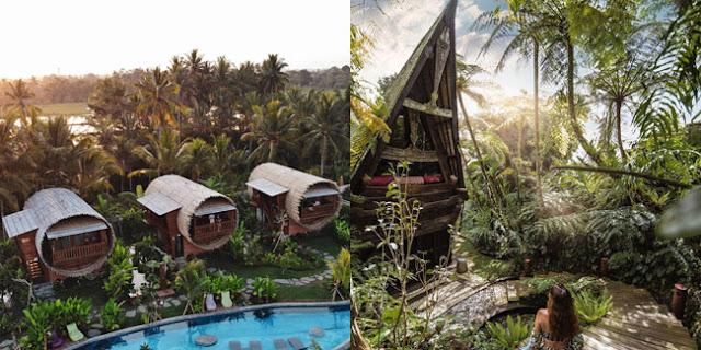 Rekomendasi Tempat Wisata Menarik di Ubud Bali