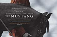 Download Film The Mustang (2019) Subtitle Indonesia
