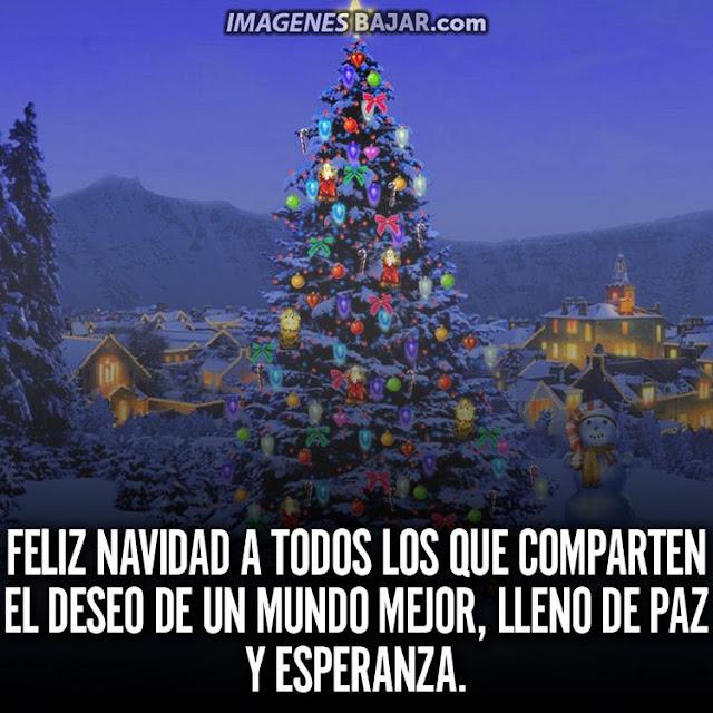 Imágenes de Feliz Navidad para desear Felices Fiestas Bonita tarjeta con paisaje navideño nevado y frase