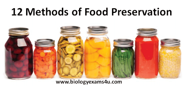 10 Methods of Food Preservation with Example