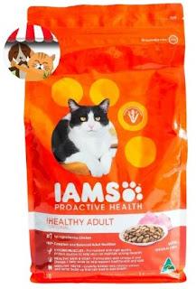 10 Rekomendasi Makanan Kucing yang Bagus Untuk Bulu yang Terawat