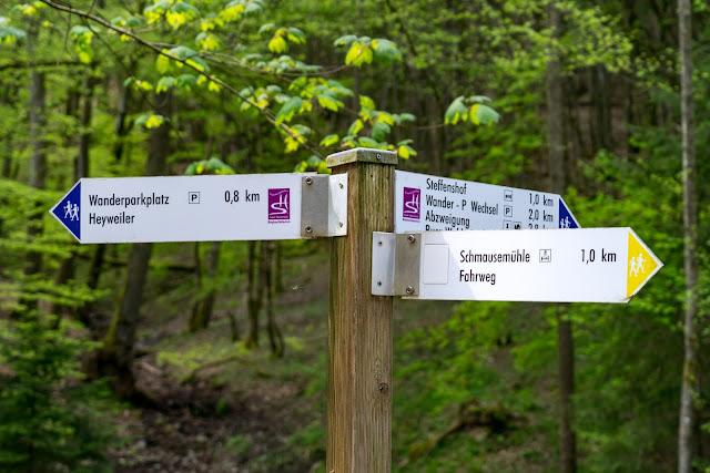 Traumschleife Baybachklamm | Saar-Hunsrück-Steig | Wandern Kastellaun | Premiumwanderweg Hunsrück 13