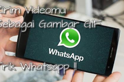 Cara Ubah Video Di Android Dan Ios Menjadi Gif Lewat Whatsapp