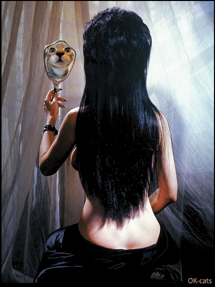 Photoshopped Cat picture • Elvira Mistress of the Dark, a real cat lover, sees her kitty in the mirror instead of seeing her own reflection
