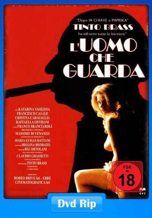 [18+] The Voyeur 1994 480p DVDRip 260MB Poster