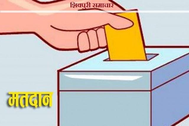 मतदान हेतु पहचान के लिए 12 दस्तावेजों में से कोई एक दस्तावेज जरूरी - SHIVPURI NEWS