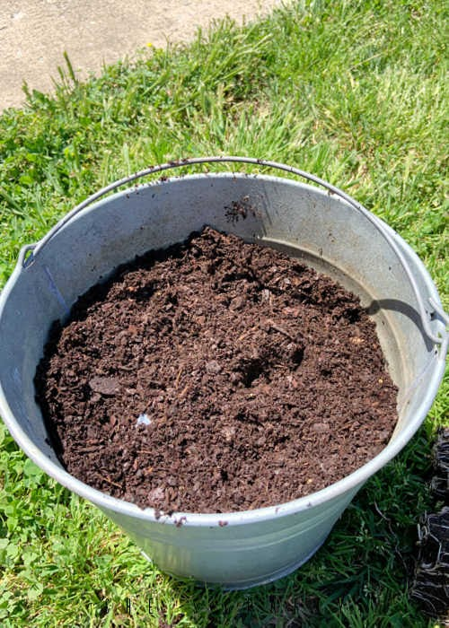 Place top soil into galvanized buckets for planting.
