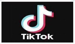 Working with civil society, industry for better Internet-TikTok