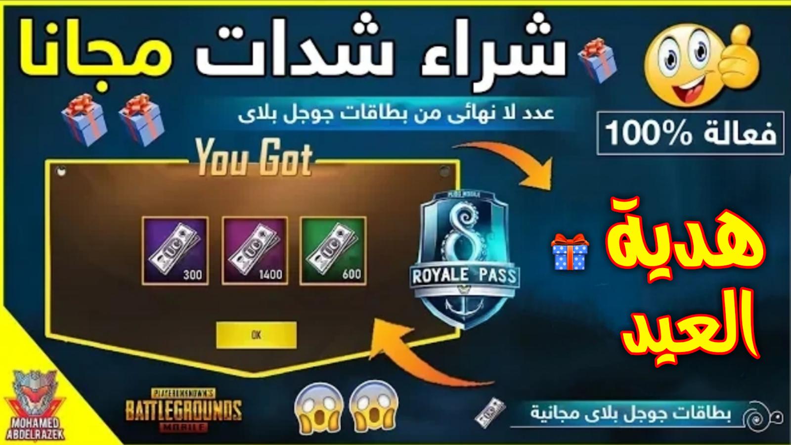 ببجي سيفر العرب هو