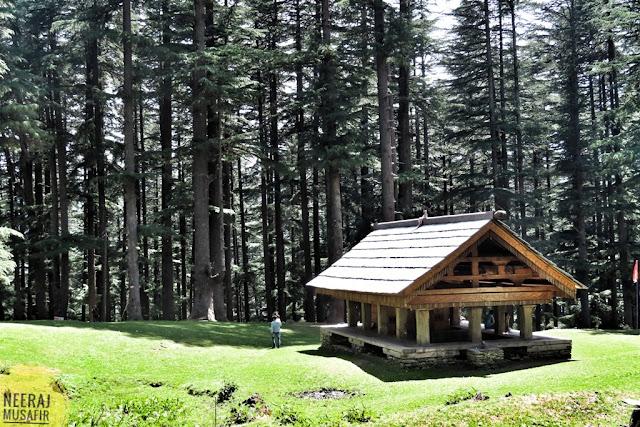 देवदार के खूबसूरत जंगल में स्थित है बाहू और बालो नाग मंदिर