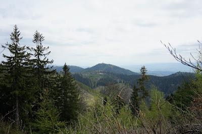 Ruprechticki Szpiczak (czes. Ruprechtický Špičák) widziany ze szlaku między Włostową a Kostrzyną
