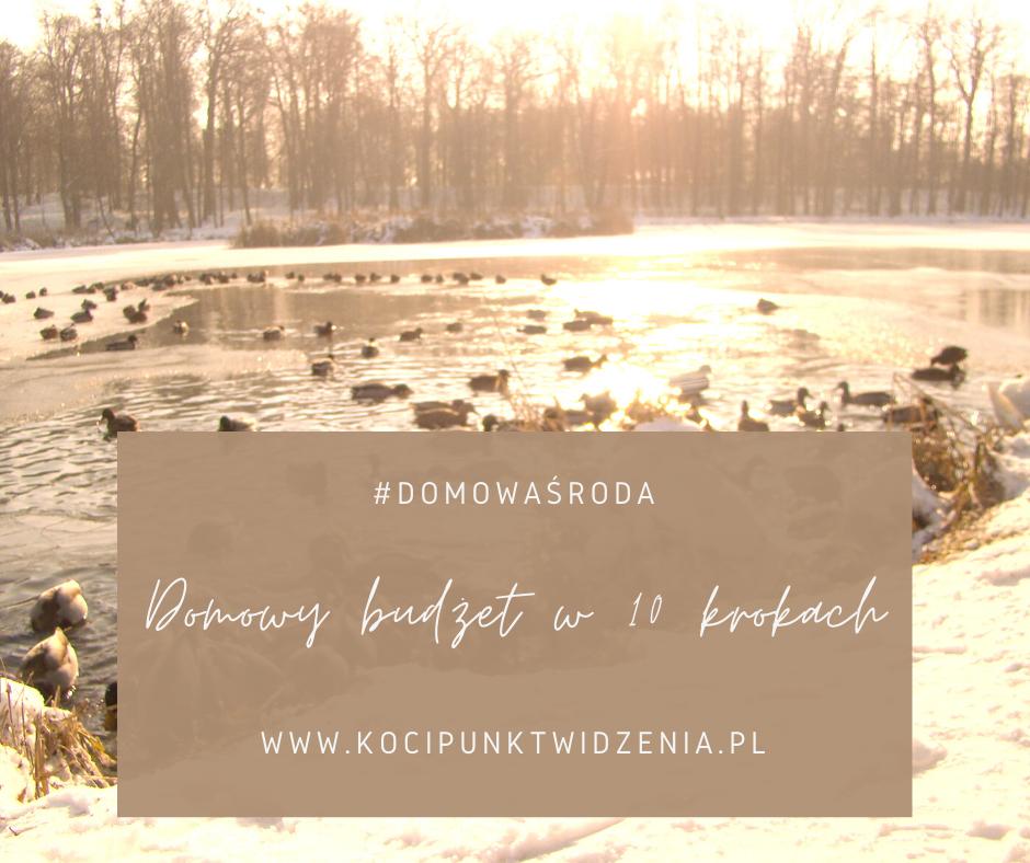 domowy budżet w 10 krokach