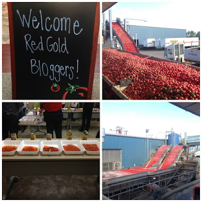 Beef & Two Bean Chili {+ Red Gold Family Farm Tour Recap} | The Chef Next Door