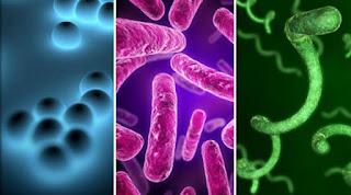 Tuberculosis (T.B.)symptoms and treatment