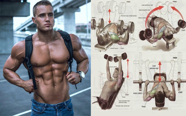 Top 10 Chest Exercises to Get Ripped for This Summer