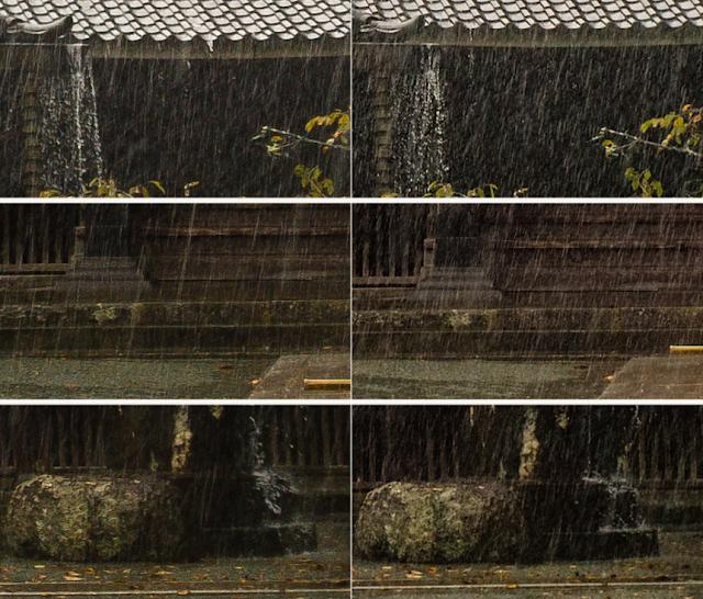 Uji Hasil Foto iPhone 7 vs Kamera Leica M9-P