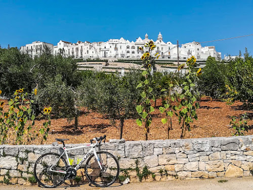 carbon road bike rental in Locorotondo cycling Apulia Bari Italy