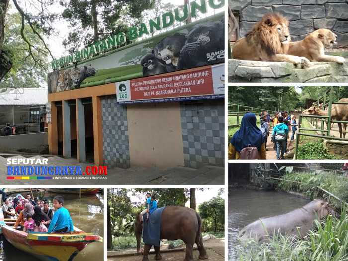 Harga Tiket Kebun Binatang Bandung 2018