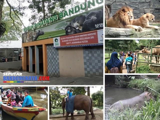 Kembali Dibuka di Era New Normal, Ini Jam Buka dan Harga Tiket Kebun Binatang Bandung