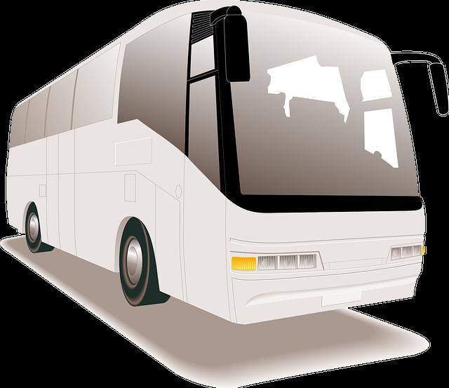 Autobus Directo a Guayabitos