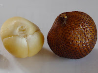 Snakefruit-Salacca edulis-Salak