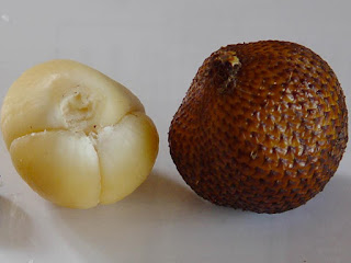 Salak Fruit Pictures