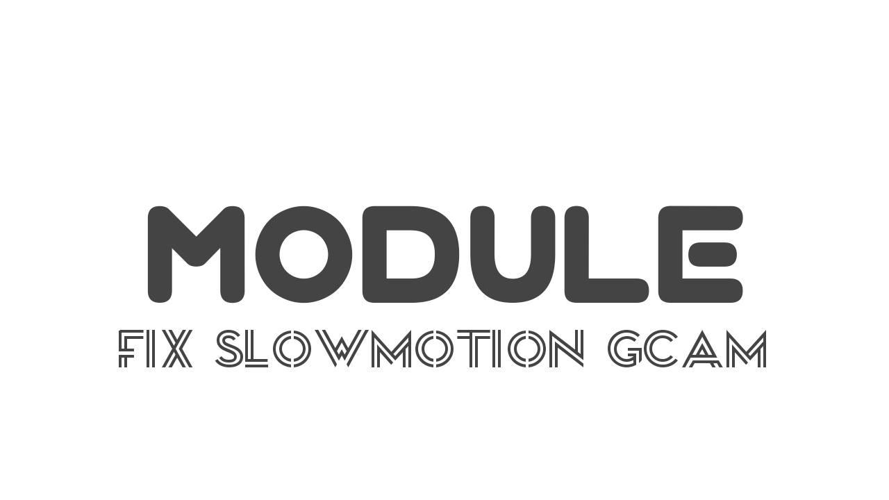 Fix slowmotion gcam