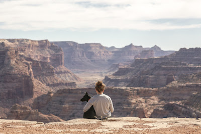 A person sits with their arm around a dog looking over a canyon